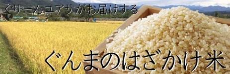 はざかけ米
